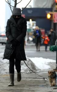 Натали Портман гуляет беременная